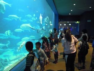 自然博物館①.JPG