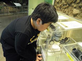 自然博物館③.JPG
